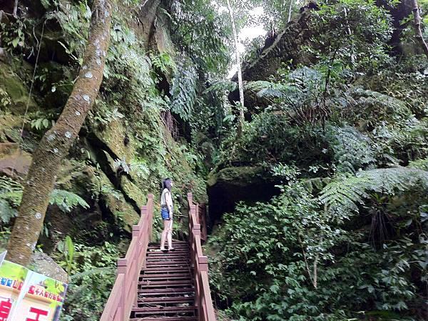 0804金龜岩及猴洞步道 (20)