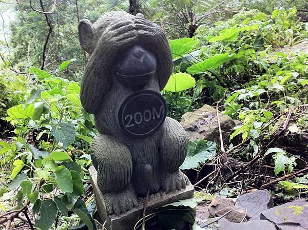 0804金龜岩及猴洞步道 (21)