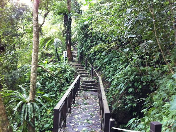 0804金龜岩及猴洞步道 (22)