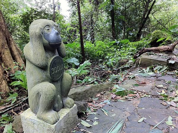 0804金龜岩及猴洞步道 (23)