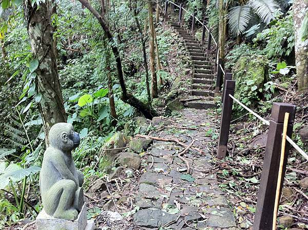 0804金龜岩及猴洞步道 (24)