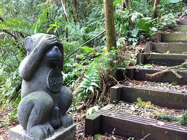 0804金龜岩及猴洞步道 (27)