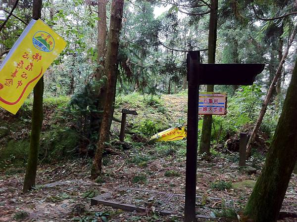 0804金龜岩及猴洞步道 (37)