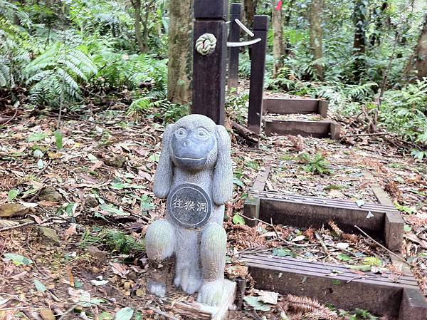 0804金龜岩及猴洞步道 (40)
