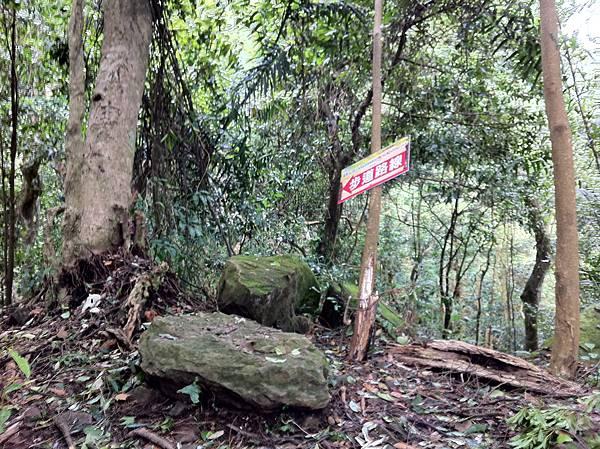 0804金龜岩及猴洞步道 (42)