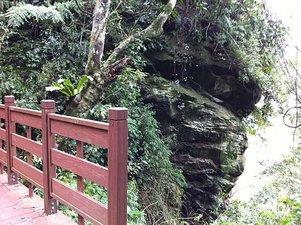 0804金龜岩及猴洞步道 (44)