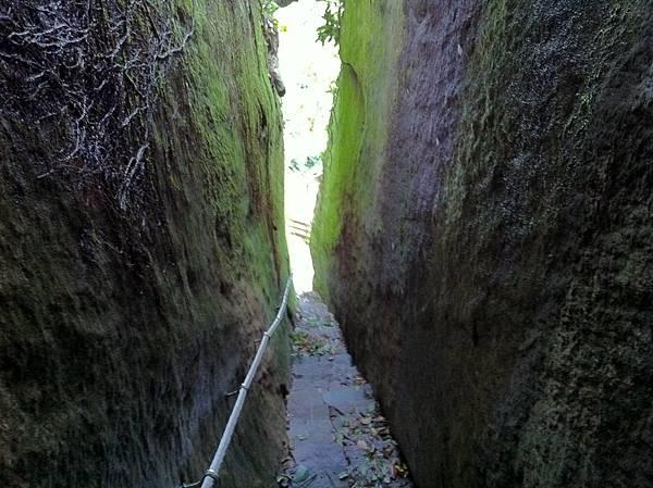 0804金龜岩及猴洞步道 (47)
