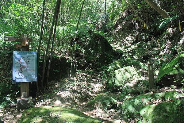 0902東勢格越嶺步道 (32)