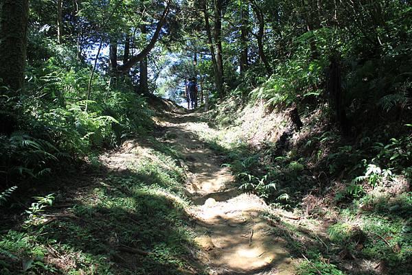 0902東勢格越嶺步道 (50)