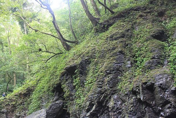 0923三峽雲森瀑布 (44)