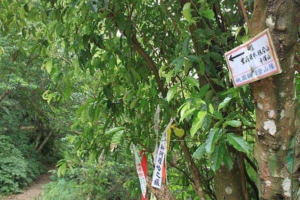 0923三峽雲森瀑布 (67)