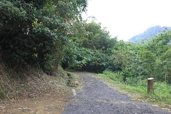 0930小粗坑古道上石門山頂 (4)