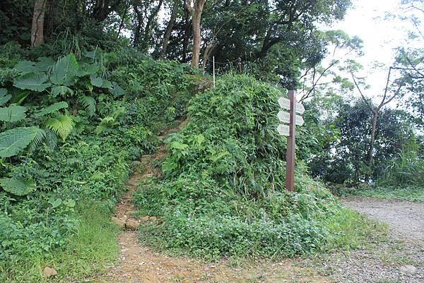 0930小粗坑古道上石門山頂 (15)