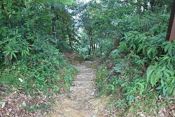 0930小粗坑古道上石門山頂 (33)