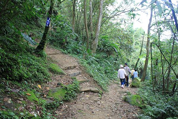 0930小粗坑古道上石門山頂 (37)