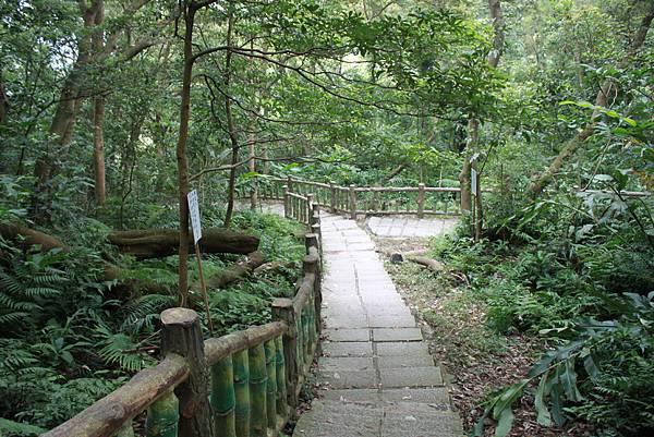 0930小粗坑古道上石門山頂 (52)