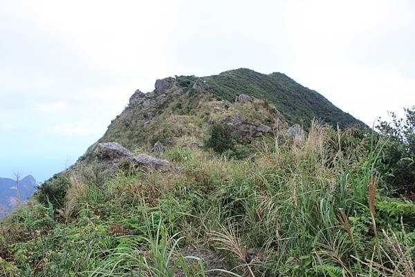 1013往半平山的無耳茶壺登山步道 (18)