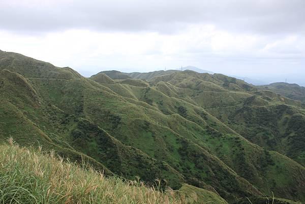 1013往半平山的無耳茶壺登山步道 (19)