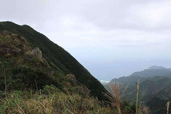 1013往半平山的無耳茶壺登山步道 (21)