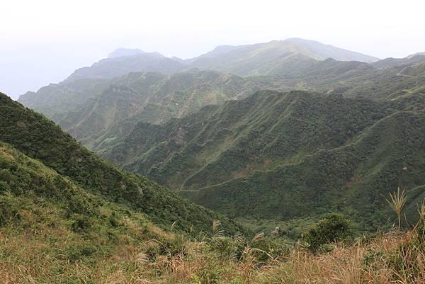 1013往半平山的無耳茶壺登山步道 (23)