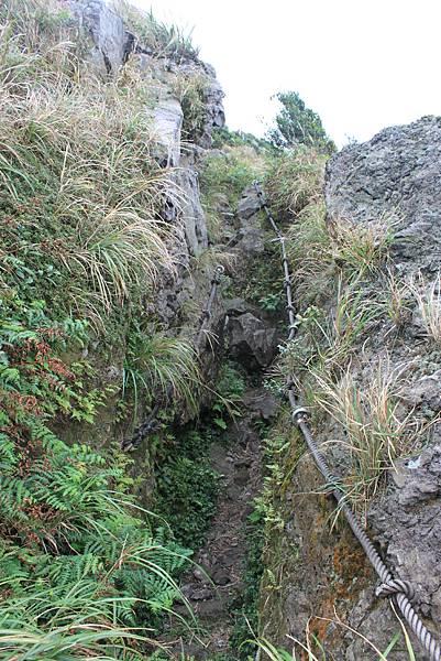 1013往半平山的無耳茶壺登山步道 (24)