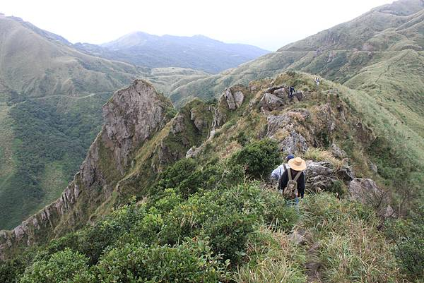1013往半平山的無耳茶壺登山步道 (25)