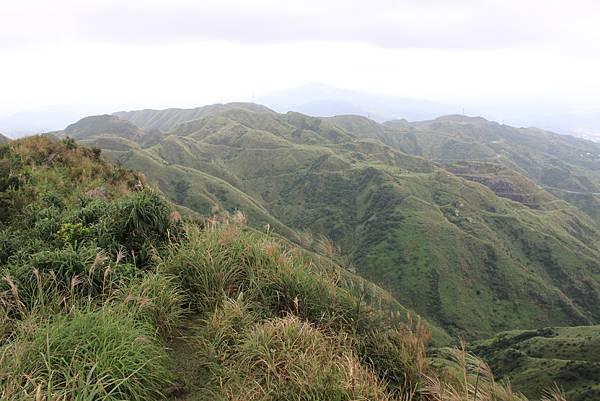 1013往半平山的無耳茶壺登山步道 (44)
