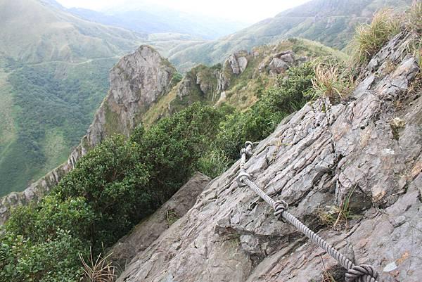 1013往半平山的無耳茶壺登山步道 (51)