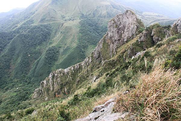 1013往半平山的無耳茶壺登山步道 (53)