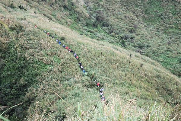 1013往半平山的無耳茶壺登山步道 (55)