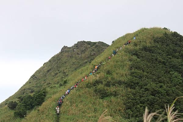 1013往半平山的無耳茶壺登山步道 (57)