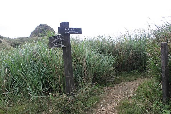 1013往半平山的無耳茶壺登山步道 (58)