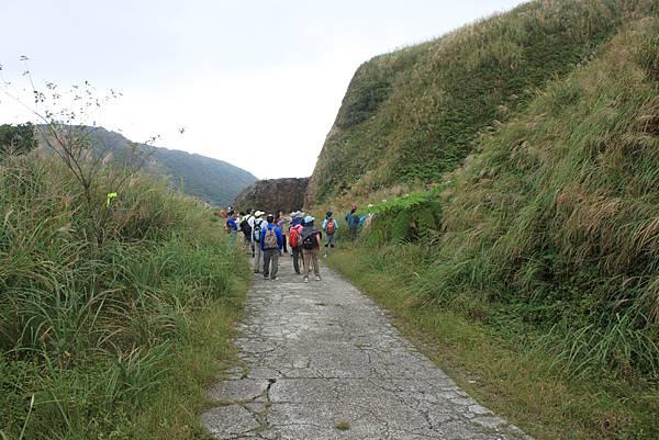 1013往半平山的無耳茶壺登山步道 (60)