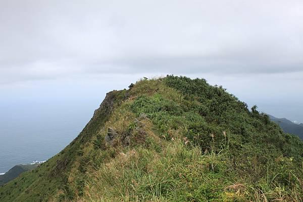 1013往半平山的無耳茶壺登山步道 (31)