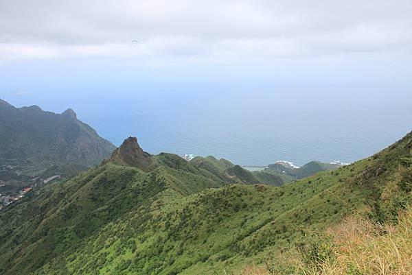 1013往半平山的無耳茶壺登山步道 (32)