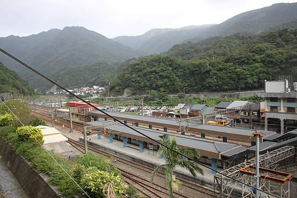 1013侯硐貓村 (8)