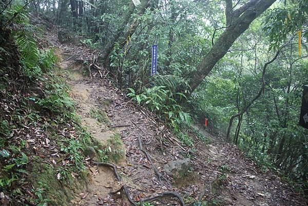 1028黃帝殿東峰 (14)