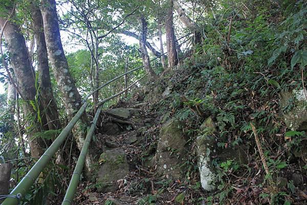 1104五峰鄉鬼澤山登山(29)