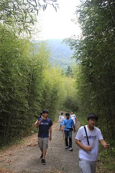 1104五峰鄉鬼澤山登山(62)