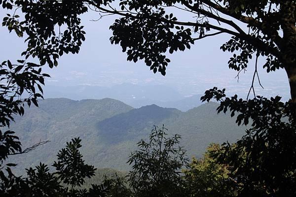 1110尖石水田山及北得拉曼神木 (19)