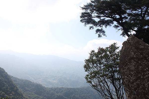 1110尖石水田山及北得拉曼神木 (23)
