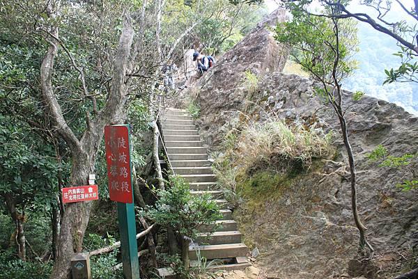 1110尖石水田山及北得拉曼神木 (28)