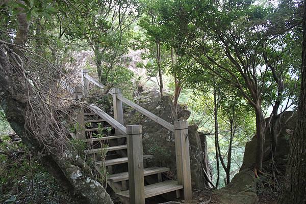 1110尖石水田山及北得拉曼神木 (38)