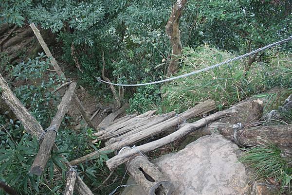1110尖石水田山及北得拉曼神木 (39)