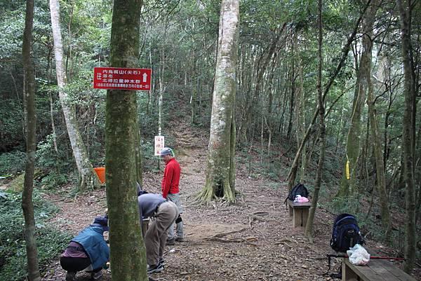 1110尖石水田山及北得拉曼神木 (50)