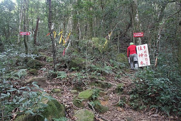 1110尖石水田山及北得拉曼神木 (52)