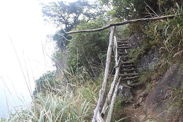 1110尖石水田山及北得拉曼神木 (88)