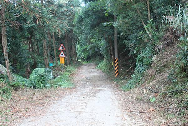 1110尖石水田山及北得拉曼神木 (96)