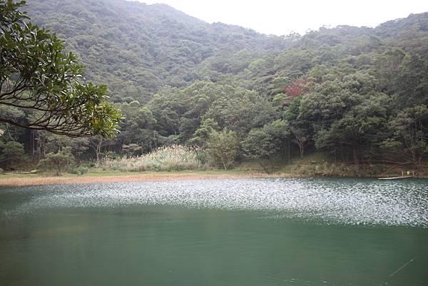 1118汐止市新山夢湖登山 (14)