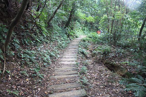 1118汐止市新山夢湖登山 (77)